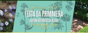 XII-spring_fest_festa-da-primavera