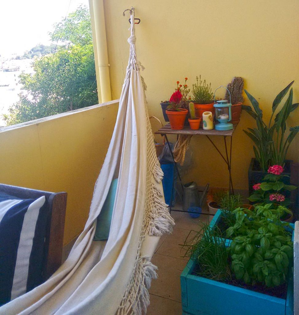 o meu jardim-4
