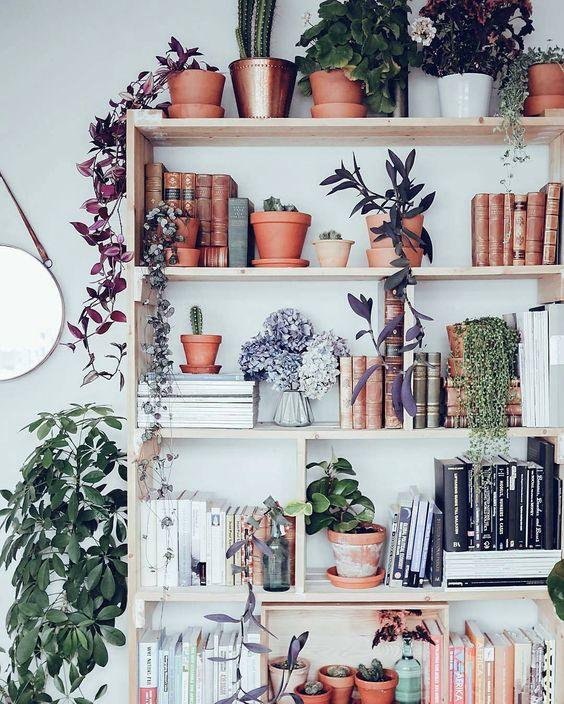 livros-com-plantas